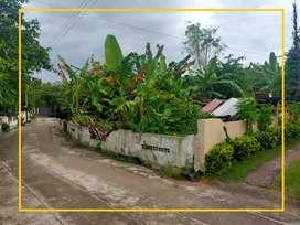 Tanah Pekarangan Murah di Godean Sidomulyo
