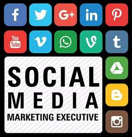 Social media marketing executive @fatehgunj