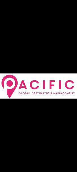 Accountant for travel agency