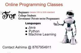 Online Programming classes for all age groups