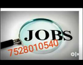 Part Time/ Full Time/ Home Based Work- No Target  Limited Vacancy