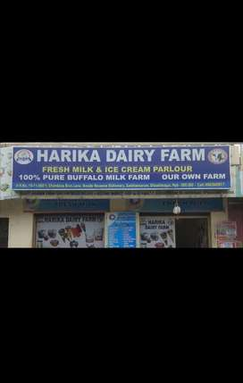 Sell our dairy products and maintain counter.