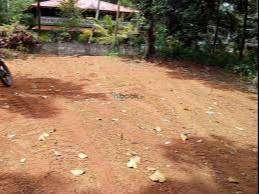 25 Cents Residential Land for sale at Cherooppa, Calicut.