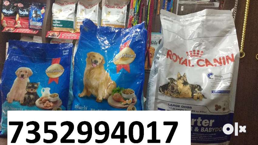 pet dog's food accessories in jamalpur with delivery 0