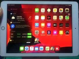 Ipad 6th gen 2018 32gb wifi rosegold