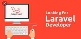 Required LARAVEL developer