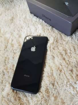 All iPhone are available
