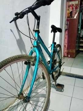 Sepeda polygon ORI karbon old