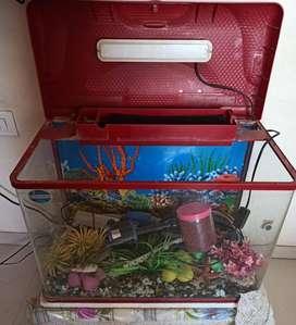 New Fish Tank and equipment