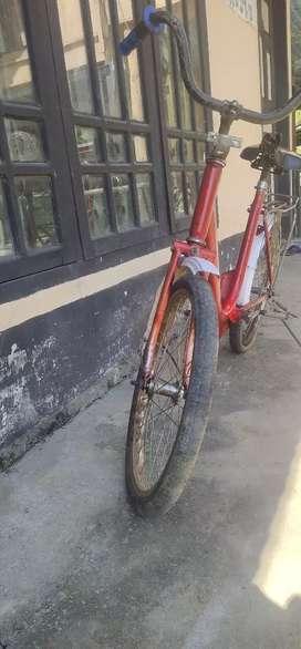 Sepeda mini phoenix 20