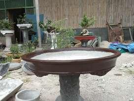 Pot bunga bonsai murah