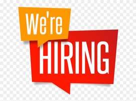 Required Female Sales Co-Ordinator for Tour Company