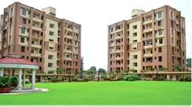 well maintained 3 bhk flat for rent