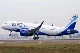 Urgent Requirement in Indigo Airlines