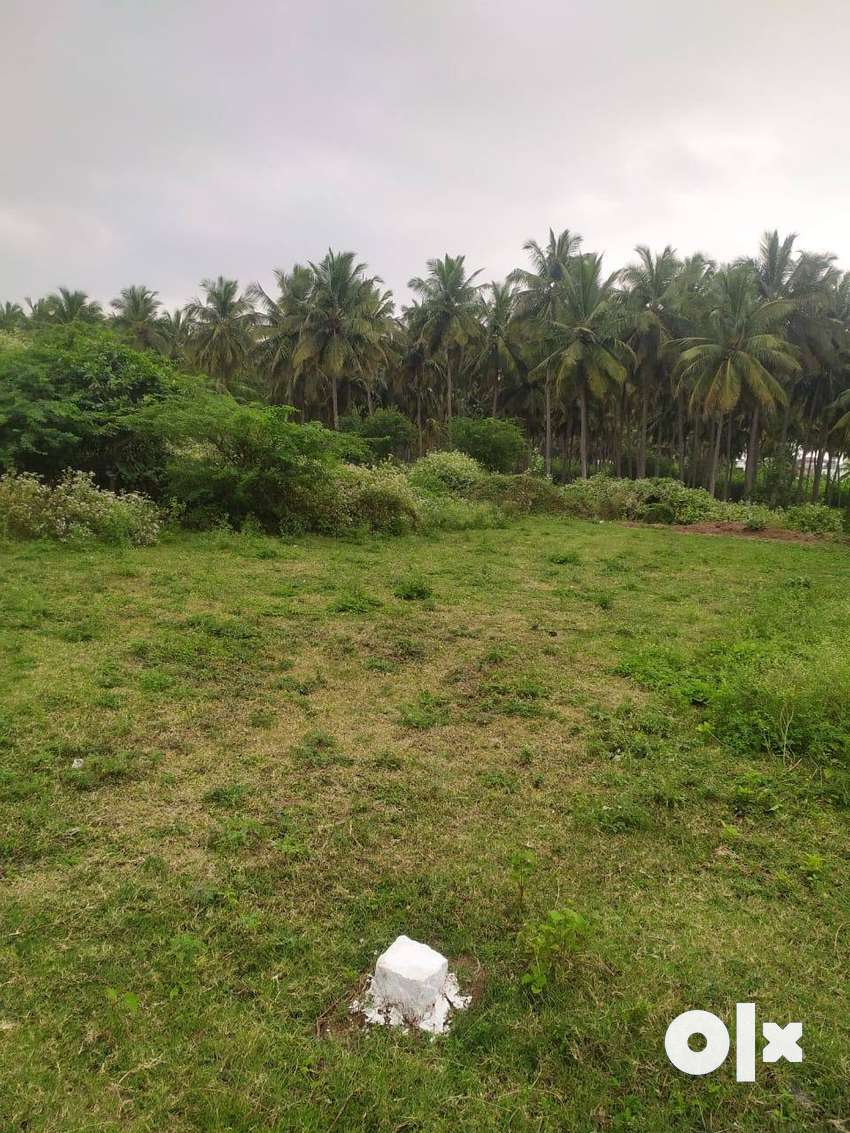 Beautiful Prime property on coimbatore main road in pollachi 0