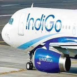 Indig0 @ Airlines 10th & 12th , Graduate Pass jobs in Airline for all