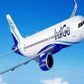 New job New vacancy for ground staff in indigo airlines