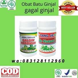 Obat Batu Ginjal Gagal Ginjal Kencing Batu Herbal De Nature
