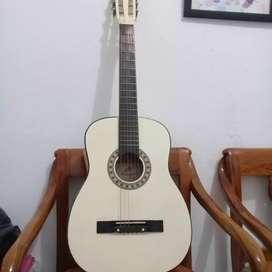 Gitar mahogani Mg010