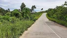 Bismillah 100 hektar Murah pinggir Jalan Poros Bumi Harapan Pusat IKN