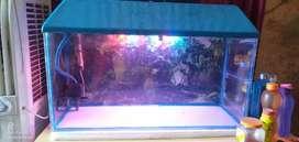3 feet fish aquarium with top filter,new condtion