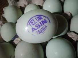 Jual telur asin