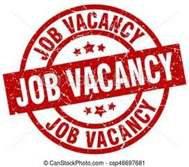 Urgent hiring fresher candidate apply Karen