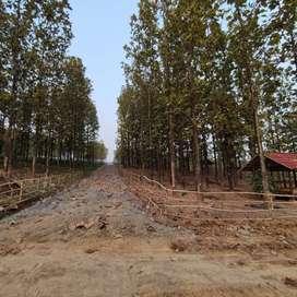 Di Jual Tanah Kavling Murah Di Bogor Pinggir Jalan Dan Masuk Mobil