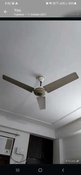 Usha ceiling fen best company