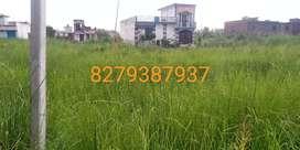 I want to sale my plot area 1000 futt