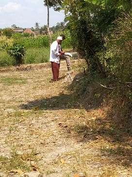 Tanah berbah BU segera dekat bandara adisucipto