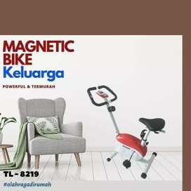 sepeda statis magnetik bike TL-8219 alat fitnes D-023