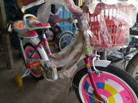 Sepeda Anak Cewe Ukuran 16