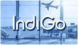10, 12, Graduate pass Full Time Job in Indigo Airlines Airport Jobs Ap