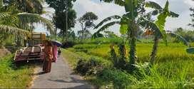 Tanah Dijual Murah dekat Universitas Islam Indonesia, JOGJA ECO PARK