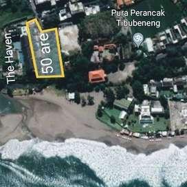 Tanah beach front, tanah di berawa, tanah di canggu langka