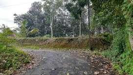 Near to Paika town(Pala)