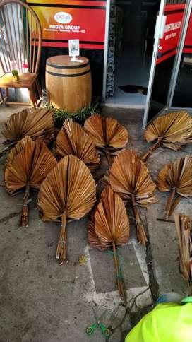 Daun palm kering dekorasi