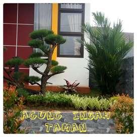 Jasa ahli dekorasi taman halaman rumah-taman asri dan hijau-harga nego