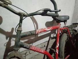 AXNDX cycle good enough