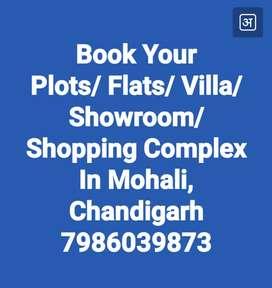 Flats And Plots in Mohali New Chandigarh near Chandigarh