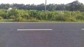 2 Acre plot Talgaria More Chas Electrosteel Road NH Me Hai Jamin