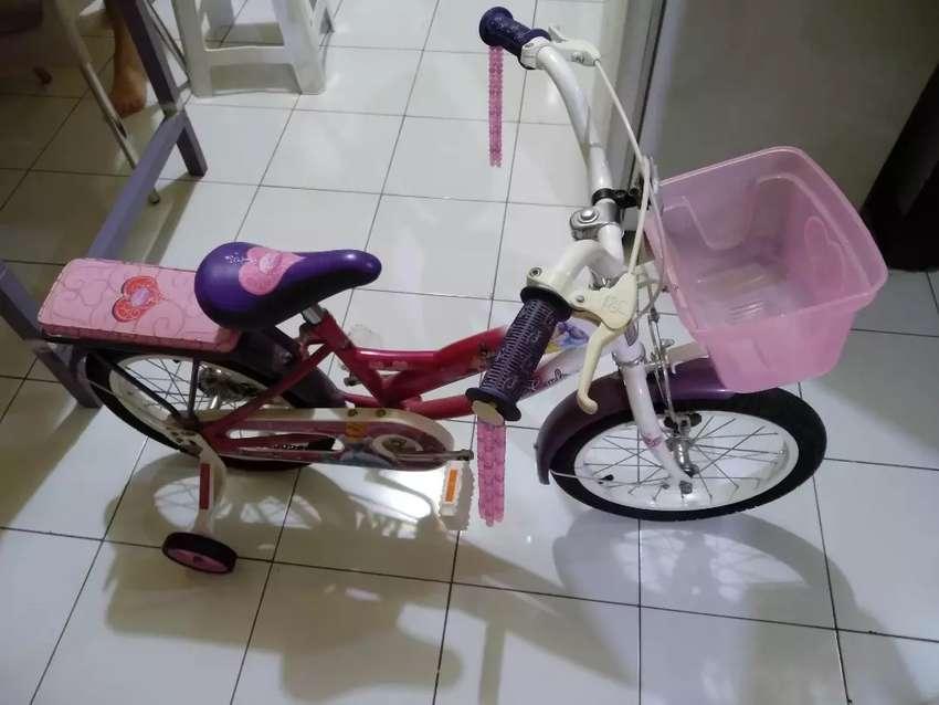 Wim Cycle Disney Princess (Sepeda Anak Cewek) 0
