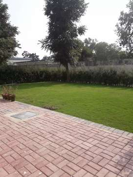 Residency Plot for Sale F-10 Islamabad
