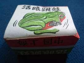 Tintoys green frog