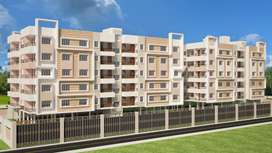 Property in Complex project