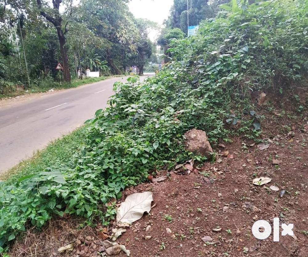 land for sale in ayur kollam kerala.