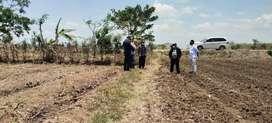 Jual tanah industri Jawa tengah di brebes