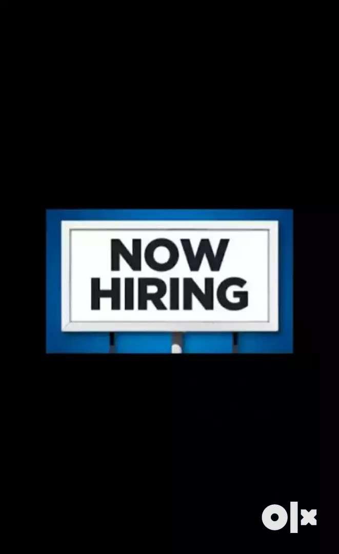 Job Vacancy 0