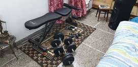 Gym bench with dambles